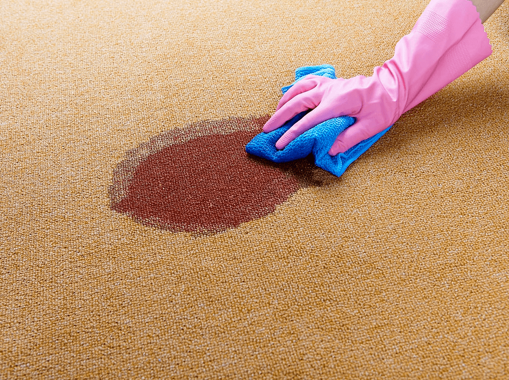 Get Blood Out Of The Carpet